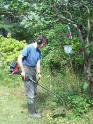 trimming weeds