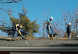 removing the old shingles